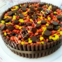 Double Chocolate Mud Cake With Chocolate Buttercream Surrounded By Cadbury Chocolate Crisp Cookie Fingers And Topped With Reeses Pieces A Double chocolate mud cake with chocolate buttercream, surrounded by Cadbury chocolate crisp cookie fingers, and topped with Reese's...