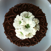 Nov 2Nd 2012 Sugar Free Vanilla Cake With Sugar Free Chocolate Icing 1Jpg