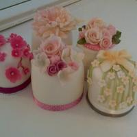 Mini Cakes For A Wedding Consultation Small mini cakes baked and decorated for a wedding consultation.