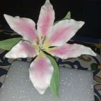 Stargazer Lily   This is my first gumpaste flower made in class.