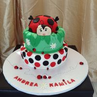 Themed Cake   Lady bug