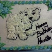 Polar Bear Bday Cake 2 layer, Vanilla and Chocolate cake I made for my son's 3rd Birthday. Was the final cake I made for my Wilton Course 1, employing the...