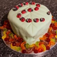 Ladybird Cake  This was the second fondant cake I ever made, this time for my son's 2nd birthday - he was into ladybirds and bugs at the time! I&#039...
