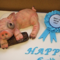 Piggy Cake 65th Birthday Cake for a friend of the family who colelcts pig ornaments.Pig all handmade by me from Mazipan. I painted the pigs on the...