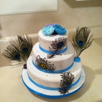 Hand Painted Peacock Cake