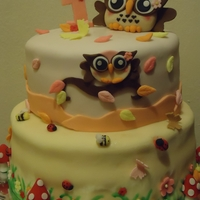 Owl Cake   Owl cake for my niece's 1st Birthday. My third 2 layer cake...need more practice...Bottom layer based on a Bakea-boo design