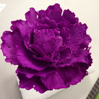 Closed Electric Purple Peony This is my very first closed peony using the Nicolas Lodge technique from craftsy. I colored it with americolor electric purple, dusted it...