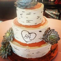 A Birch Wood Inspired Wedding Cake With Fresh Succulents Thankfully The Succulents Had Short Stems And I Was Able To Put Them In A Milkshak... A birch wood inspired wedding cake with fresh succulents. Thankfully the succulents had short stems and I was able to put them in a...