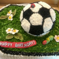 Soccer Ball Cake Soccer ball made from mold and buttercream stars, ladybug, flowers an caterpillar made of fondant