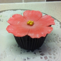 Flower Cupcake! First attempt using gumpaste!