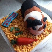 A Late Birthday Cake For A Cute Animal Fan A late birthday cake for a cute animal fan!