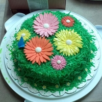 Spring Daisies grass is made from colored colonut flakes and gerber daisies are fondant.
