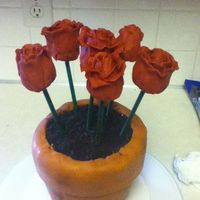 Terra Cotta Pot And Cake Pop Roses Cake Terra cotta pot and cake pop roses cake.