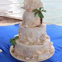 Beach Themed Wedding Cake Beach Themed wedding cake.