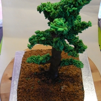 Bonsai Cake Bonsai cake to celebrate a retirement (and a birthday)