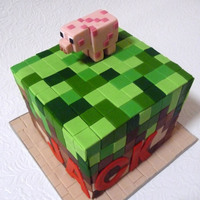 "Jack's Minecraft 21St I made this small 4"" cake for my partner's best friend's birthday. It was pretty quick but I'm pretty happy with it...."