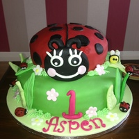 Ladybug Cake For A Ladybug Themed First Birthday Party Ladybug cake for a ladybug themed first birthday party :)