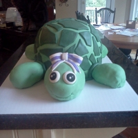 Turtle Cake Turtle Cake for my friend's birthday. everything is fondant and the eyes are royal icing. The legs, head, and tail for all rice...