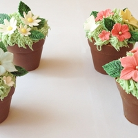 Flower Pot Cupcakes! Flower pot cupcakes, handmade chocolate pots filled with sponge cake and decorated with flowers!