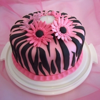 Zebra Stripes And Gerberas
