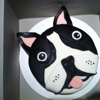 Boston Terrier Cake Boston Terrier Cake