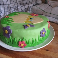Hatching Chick - My 2Nd Cake