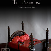 "The Playroom inspired from ""50 shades of grey"" from E.L. James"