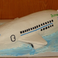 Airplane Cake All BC Airplane Cake