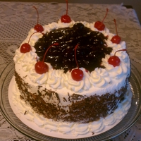 Black Forest Cake Black Forest with chocolate cake, sour cherries and whipped cream