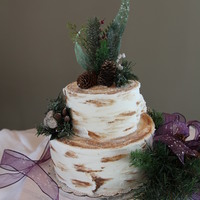 Birch Tree For Rustic Winter Wedding (Photos By Anniea Photography) All buttercream, silk greens