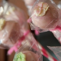 Pink Cake Pops   wasc & champagne cakepops; pink white chocolate cover, white chocolate flower decor