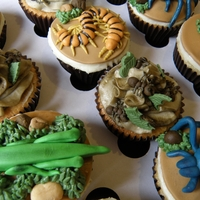 Bug Cupcakes I was asked to make these for a friend who'd just returned from a three month tour of South America.