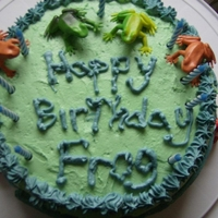 For My Brother. Birthday cake I made and decorated for my brother. His nickname is Frog, hence the toy frogs. Also, the piping bag and tips I was working...