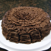 Chocolate Buttercream Ruffle Cake For Sunday hospitality, I baked this deliciously moist cake using a Sweet Dreams mix. After baking, filling, and crumb coating the layers,...