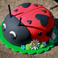 Ladybug Birthday Cake  Used the Wilton butter cake recipe and Wilton buttercream recipe for the filling (added fresh raspberries and cream cheese). Fondant is...