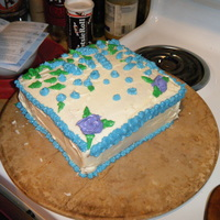 Playing Cake This is my first time decorating a cake. It was a play cake, playing with my new cake decorating kit, before I knew anything of what I was...