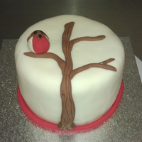 Lonely Robin   Fruit cake , marzipanned & iced in fondant.