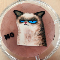 Grumpy Cat My First Cake Of The Year I Painted The Cat On Modelling Chocolate I Had Some Fun Firsts With This Cake This Was The First Grumpy Cat. My first cake of the year. I painted the cat on modelling chocolate. I had some fun firsts with this cake. This was the first...