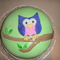 Owl Cake Vanilla cake with Nutella filling, covered with fondant.