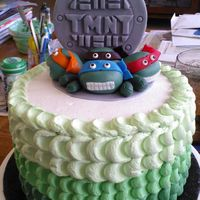 Teenage Mutant Ninja Turtles Whipped petal technique frosting. TMNT's made of fondant.