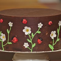 "Ladybirds And Flowers A simple ganached 8"" chocolate cake with sugarpaste flowers and ladybirds. The centre was hollowed out and filled with skittles for a..."
