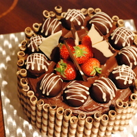 Chocolate And Vanilla Sponge With Cake Truffles Fresh Strawberries Chocolate Shards And Chocolate Wafer Sticks Chocolate and Vanilla sponge with cake truffles, fresh strawberries, chocolate shards and chocolate wafer sticks.
