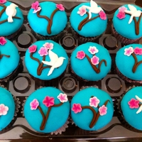 Cherry Blossom Cupcakes Caribbean Blue with Pink Cherry Blossom flowers and Hummingbird