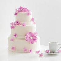 Pink Flowered Wedding Cake With Blossoms And Hydrangeas Is Cute And Girly pink flowered wedding cake with blossoms and hydrangeas is cute and girly.