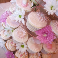 Baby Pink Cupcakes