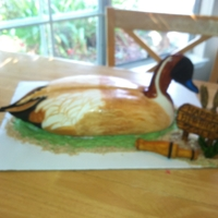 Pintail Duck Decoy Pintail Duck with cake body, gumpaste head, RKT bust, covered in fondant, hand painted.
