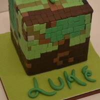 "Minecraft Cube Cake 7 X 6 Tall Chocolate Mud With Caramel Layers Of Buttercream Minecraft cube cake 7"" x 6"" tall chocolate mud with caramel layers of buttercream"