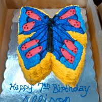 "Butterfly Cake Butterfly Cake, made out of a 10"" round. All buttercream. For a 7 year old girls birthday party."