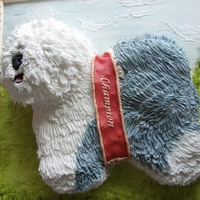 Uk Champion Dog Celebration Cake Old english sheepdog cake made to look like a picture
