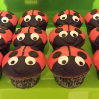 Chocolate Ladybug Cupcakes With Strawberry Frosting And Fondant Chocolate ladybug cupcakes with strawberry frosting and fondant